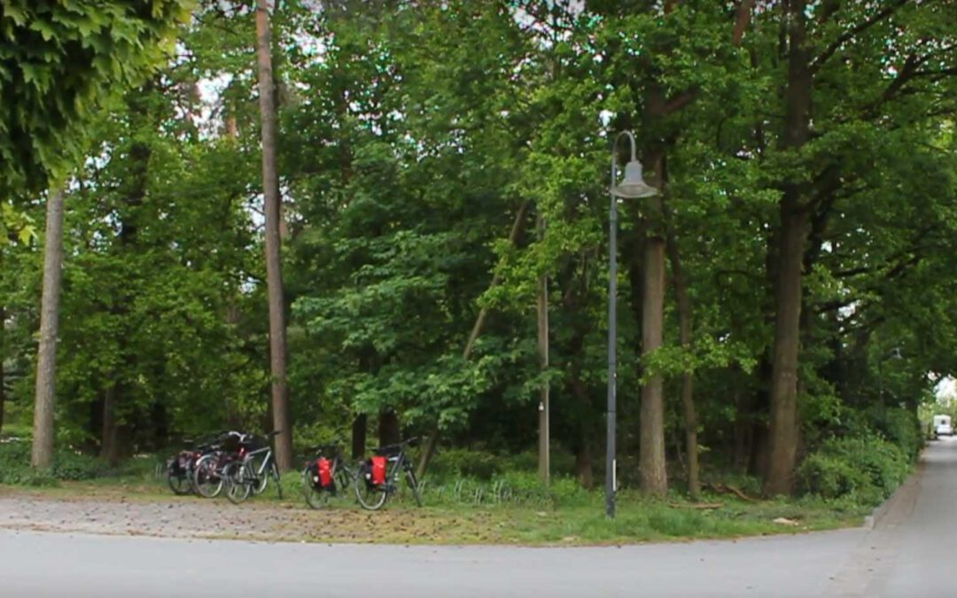 Fensterberg-Wald soll kein Bauland werden